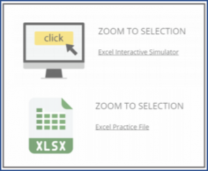 Excel Zoom