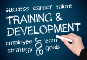 Leap To Success the Training company can help improve your skillsets
